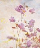 Grunge blom- bakgrund Arkivbild