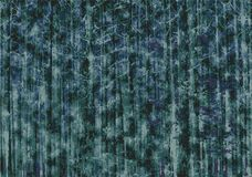 Grunge scary dark wood forest abstract background Stock Images