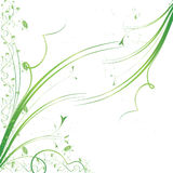 Grunge Blumenhintergrund Lizenzfreie Stockbilder