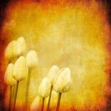 Grunge Blumenhintergrund mit Platz für Text stock abbildung