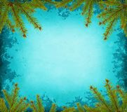 Grunge border with spruce Royalty Free Stock Image