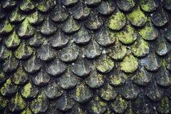 Grunge borstad stentextur med mossa, abstrakt industriell baksida Royaltyfria Bilder
