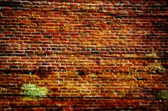 Grunge Brick Stock Photography