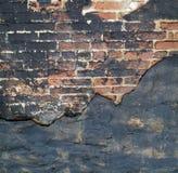Grunge Brick background Stock Image