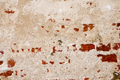 Grunge brick background Stock Image