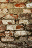 Grunge brick wall Stock Photography