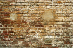 Grunge brick wall. Stock Photography