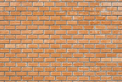 Grunge brick wall. Royalty Free Stock Images