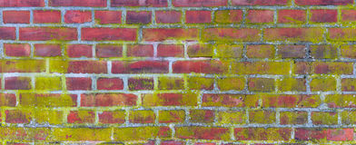 Grunge brick wall background. royalty free stock image