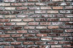 Grunge Brick Wall. Closeup of grunge brick wall background. Photographed June 29th 2014 Royalty Free Stock Images