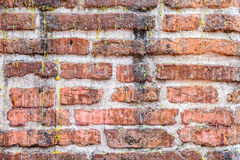 Grunge brick wall dirty with candle dripping Royalty Free Stock Photography