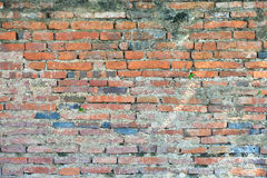 Grunge Brick Wall Stock Images