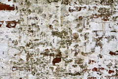 Grunge brick wall of the old house. Remains of old plaster Stock Photography