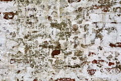 Grunge brick wall of the old house. Remains of old plaster Royalty Free Stock Photography
