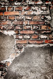 Grunge brick wall texture Royalty Free Stock Image