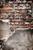 Grunge brick wall texture Royalty Free Stock Image