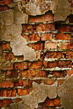 Grunge brick wall texture Stock Image