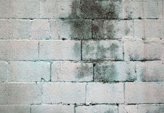 Grunge brick wall texture background Stock Images