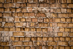 Grunge brick wall texture or background Royalty Free Stock Images