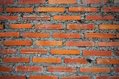Grunge brick wall texture for background Royalty Free Stock Photo