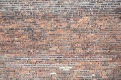 Grunge brick wall Stock Images