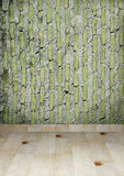 GRUNGE BRICK WALL AND WOODEN FLOOR Royalty Free Stock Photography