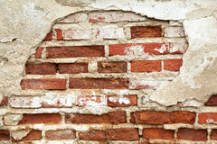 Grunge bricks Stock Images