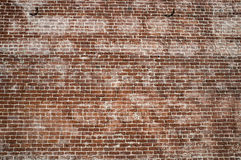 Grunge bricks background Royalty Free Stock Images