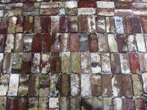 Grunge bricks Stock Photography