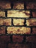 grunge bricks wall Royalty Free Stock Images