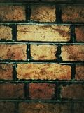 grunge bricks wall Stock Photography