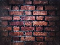grunge bricks wall background Royalty Free Stock Photography