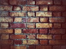 grunge bricks wall Royalty Free Stock Photos