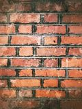 grunge bricks wall Royalty Free Stock Image