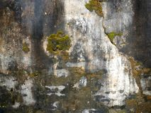 Grunge brickwork wall texture with moss render. Could be used for background pattern Royalty Free Stock Photo