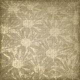 Grunge brown background with floral ornament. Stock Photos