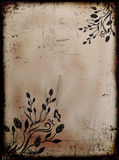 Grunge burned floral background with butterflies Stock Image
