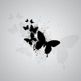 Grunge butterflies. Gray background with black silhouettes of butterflies. eps10 Royalty Free Stock Photography