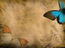 Grunge butterfly background Stock Photo