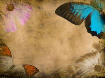 Grunge butterfly background. Old grunge butterfly paper texture background stock photo