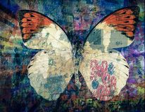 Grunge Butterfly background texture. Image stock photography