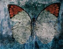Grunge butterfly background texture. Indigo royalty free stock images