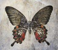 A grunge butterfly design wallpaper. Texture Stock Photo