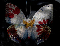 Grunge butterfly Stock Images