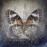 A grunge butterfly wallpaper texture. Layers stock photo