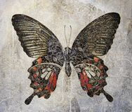 A grunge butterfly wallpaper texture. Image stock photo