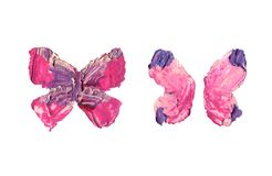 Grunge butterfly wings with oil painting texture vector illustration