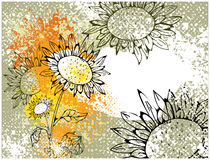 Grunge card with sunflowers Royalty Free Stock Photos