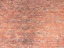 Grunge cegły Obrazy Stock