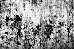 Grunge cement wall in black and white style Royalty Free Stock Photo